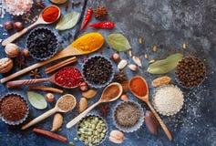 Várias especiarias, porcas e ervas indianas em colheres e em umas bacias de madeira do metal Fotografia de Stock Royalty Free
