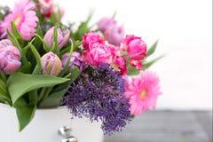 Várias flores da mola para o dia de mães Foto de Stock Royalty Free