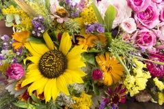 Várias flores do verão foto de stock royalty free