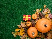 Várias folhas de outono e abóboras alaranjadas com caixas de presente Foto de Stock