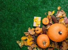 Várias folhas de outono e abóboras alaranjadas com caixas de presente Imagem de Stock Royalty Free