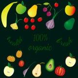 Várias frutas e legumes no fundo escuro, texto - orgânico ilustração do vetor