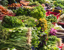 Várias frutas e legumes no mercado em Tailândia Fotografia de Stock Royalty Free