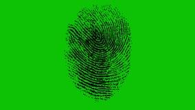 Várias impressões digitais que correm na tela verde 4K ilustração do vetor