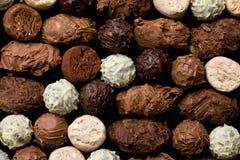 Várias trufas de chocolate foto de stock