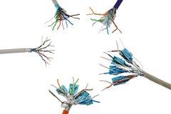Vário STP protegido e a rede não protegida do twisted pair cabografam no círculo, fundo branco Imagem de Stock Royalty Free