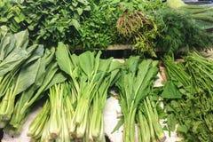 Vário tipo de vegetais Imagem de Stock