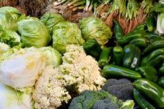 Vário vegetal no verde Fotos de Stock Royalty Free