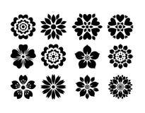 Vário vetor isolado da flor Fotografia de Stock Royalty Free