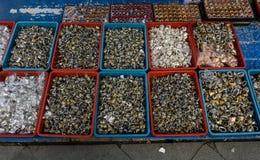 Vários amável e colorido das pedras preciosas e da ágata venderam no mercado tradicional em Bogor Indonésia fotos de stock royalty free