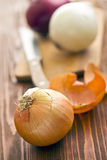 Vários bulbos na tabela de madeira Foto de Stock