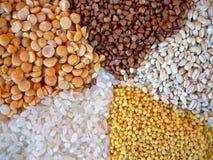Vários cereais. Ervilhas, arroz, cevada de pérola, painço. Imagens de Stock Royalty Free