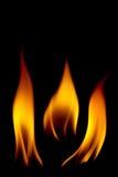 Vários estilos do fogo Fotos de Stock