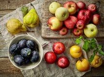 vários frutos frescos Imagens de Stock