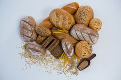 Vários nacos do pão Imagem de Stock