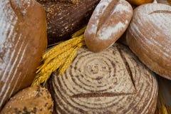 Vários nacos do pão Imagem de Stock Royalty Free
