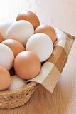 Vários ovos da galinha Imagens de Stock