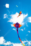 Vários papagaios que voam no céu imagem de stock
