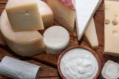 Vários queijos Imagem de Stock