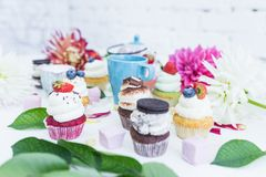 Vários queques com as flores e folhas frescas das bagas, um copo do chá ou café Fotografia de Stock