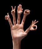 Vários sinais da mão Fotos de Stock