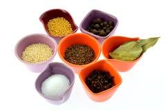 Vários tipos das especiarias em uns copos minúsculos Imagem de Stock Royalty Free
