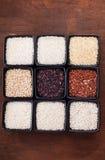Vários tipos de arroz Fotos de Stock Royalty Free
