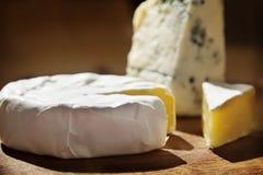 Vários tipos de composição do queijo Foto de Stock Royalty Free