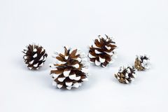 Vários tipos de cones Imagens de Stock Royalty Free
