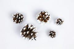 Vários tipos de cones Foto de Stock