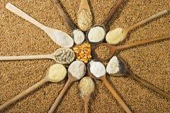 Vários tipos de farinha Foto de Stock