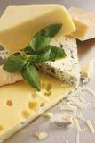 Vários tipos de queijo em inoxidável Fotos de Stock Royalty Free
