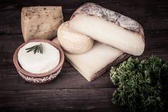 Vários tipos de queijo em um fundo de madeira com salsa matiz Fotos de Stock