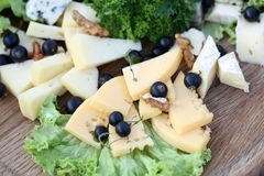 Vários tipos de queijos gourmet Imagens de Stock