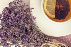 Vários tipos do chá na tabela de madeira Fotografia de Stock Royalty Free