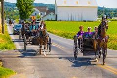 Vários vagões de Amish imagem de stock