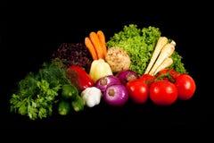 Vários vegetais Foto de Stock Royalty Free