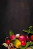 Vários vegetais e ervas na tabela de madeira escura Fotos de Stock Royalty Free