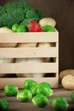 Vários vegetais na caixa Fotografia de Stock Royalty Free