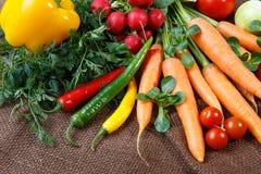 Vários vegetais orgânicos frescos fotos de stock