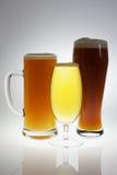 Vários vidros de cervejas diferentes Fotografia de Stock