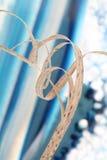Vástago de la hierba secada Fotos de archivo libres de regalías
