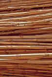 Vástagos secos Fotografía de archivo libre de regalías