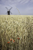 Väderkvarn Fotografering för Bildbyråer