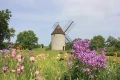 Väderkvarn- och iristrädgård i Lot-et-Garonne Fotografering för Bildbyråer