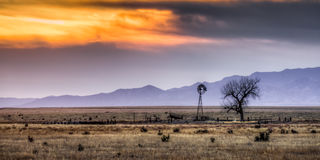 Väderkvarn på de Colorado slättarna Fotografering för Bildbyråer