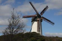 Väderkvarn på Skerries i Irland Royaltyfri Foto