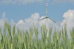 Väderkvarn produktion av grön energi. Royaltyfri Bild