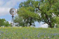 Väderkvarn upptill av en kulle i södra Texas Arkivbilder