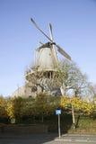 Väderkvarn Windhond i den holländska staden av Woerden Arkivfoto